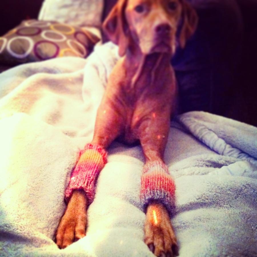 LUCY LEG WARMERS