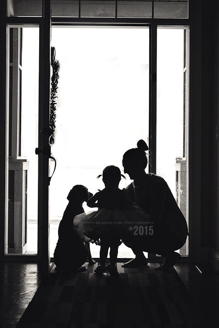 DOOR SILHOUETTE 2015 LR BLOG